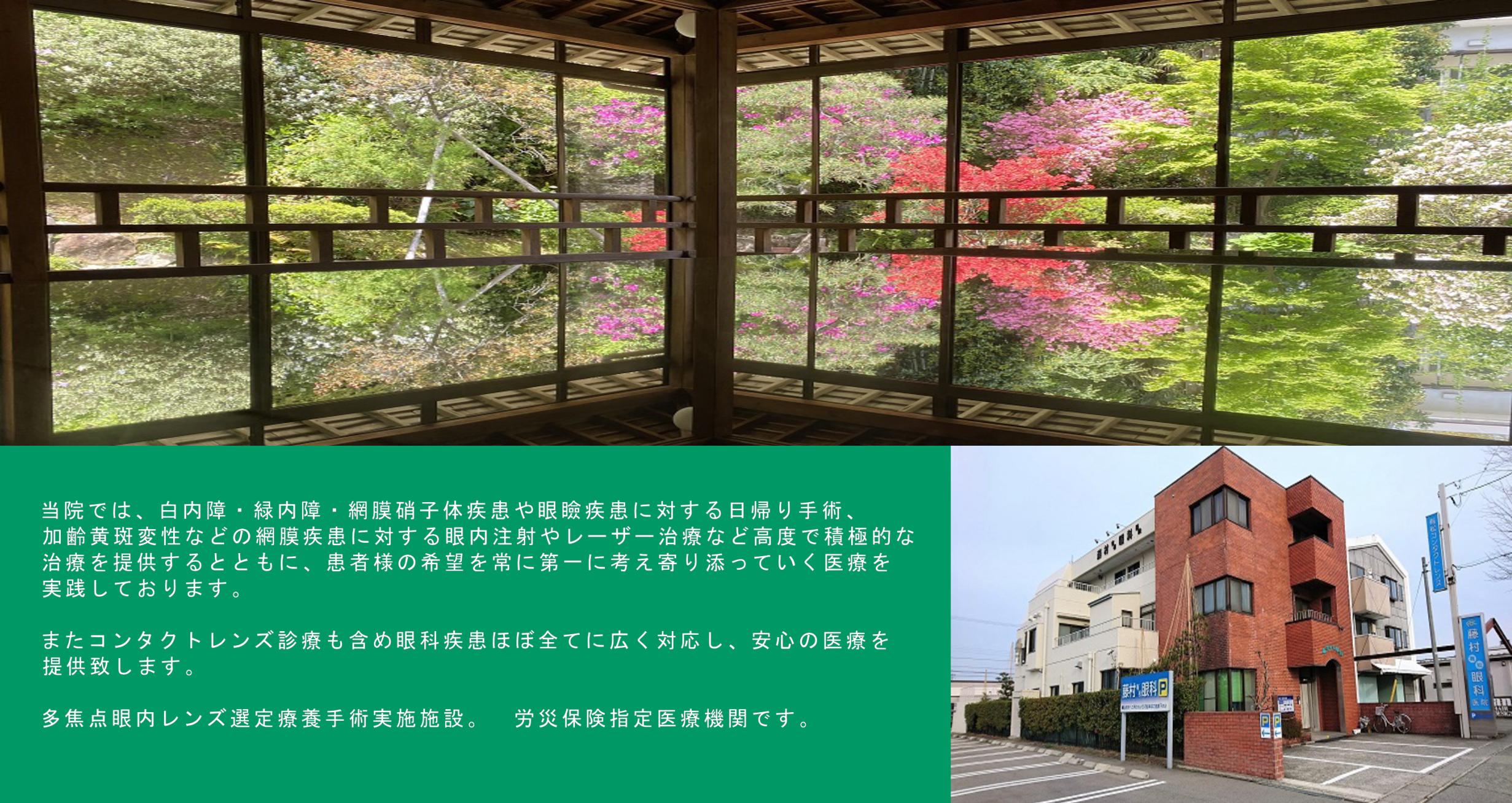石川県 ばくさい